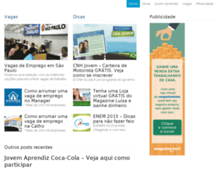 empregosnobrasil.net screenshot
