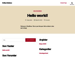 erdinckolukisa.com screenshot