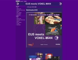 eus-meets-voxel-man.de screenshot