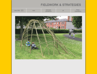 fieldworkandstrategies.com screenshot