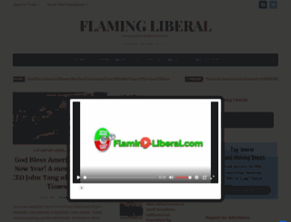 flaming-liberal.com screenshot