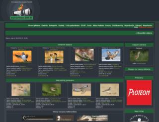 fotoptaki.art.pl screenshot
