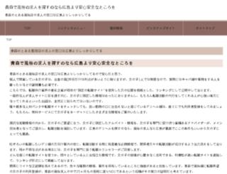 frenshipministorage.com screenshot