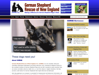 gsrne.org screenshot