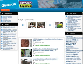 guvercinvideolari.net screenshot