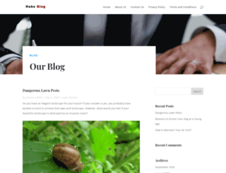 habsblog.com screenshot