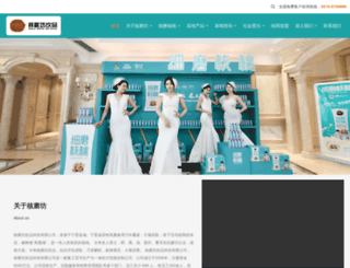 hebeihuapeng.com screenshot