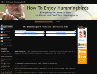 howtoenjoyhummingbirds.com screenshot