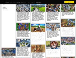 humorhut.com screenshot