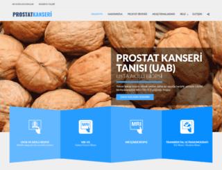 hurriyet.net screenshot