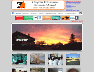 hvsmveterinario.com screenshot