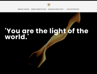 indigointernational.org screenshot