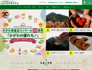 kensanpin.org screenshot