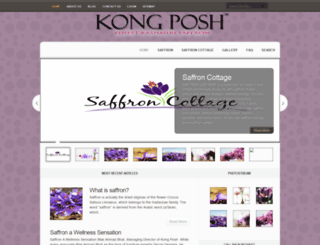 kong-posh.com screenshot