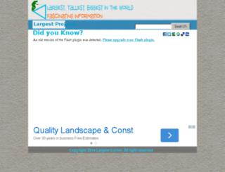 largestcorner.com screenshot