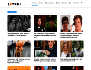 laykni.com screenshot