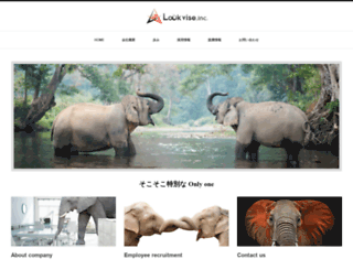 lookvise.com screenshot