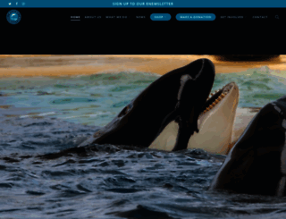 marineconnection.org screenshot