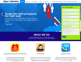 megabizmarketing.com screenshot