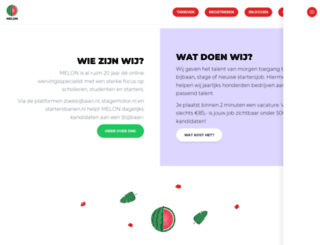 melonmedia.nl screenshot
