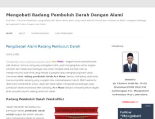 mengobatiradangpembuluhdarah.wordpress.com screenshot