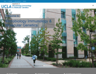 mimg.ucla.edu screenshot