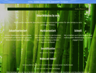 mvs-gmbh.net screenshot