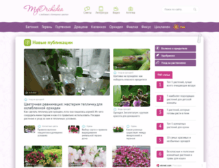 myorchidea.ru screenshot