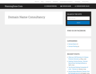namingzone.com screenshot