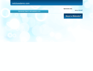netcluesdemo.com screenshot