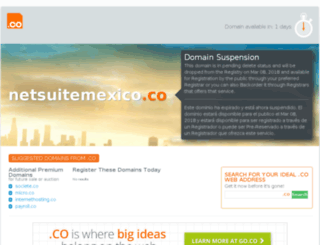 netsuitemexico.co screenshot