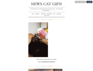 newscatgif.tumblr.com screenshot