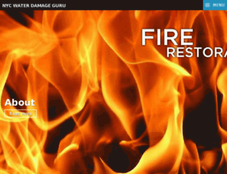 nycwaterdamage.guru screenshot