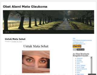 obatalamimataglaukoma.wordpress.com screenshot