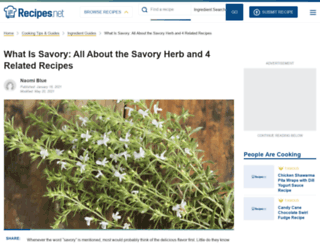 origin.thesavory.com screenshot
