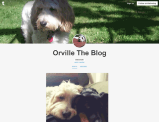 orvillethedog.tumblr.com screenshot