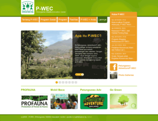 p-wec.org screenshot
