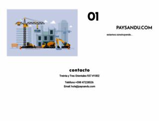 paysandu.com screenshot