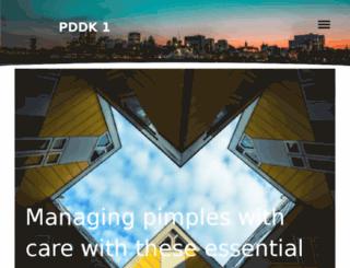 pddk1.com screenshot