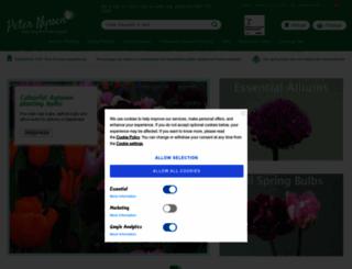peternyssen.com screenshot