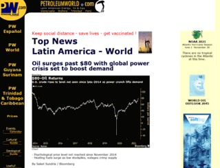 petroleumworld.com screenshot
