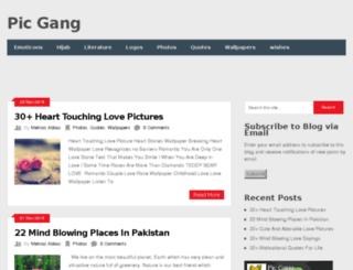 picgang.com screenshot