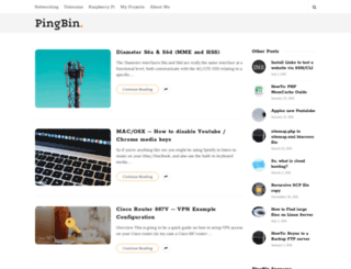pingbin.com screenshot