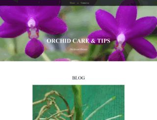 plantorchid.wordpress.com screenshot