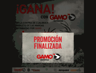 promogamo.com screenshot