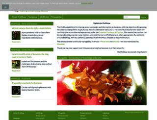 promusa.org screenshot