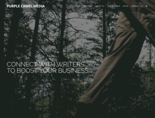 purplecamelmedia.com screenshot