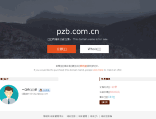 pzb.com.cn screenshot