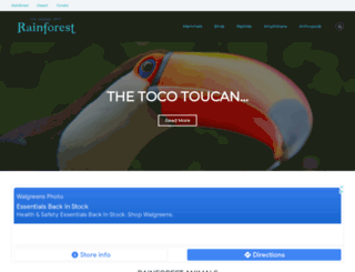 rainforestanimals.net screenshot