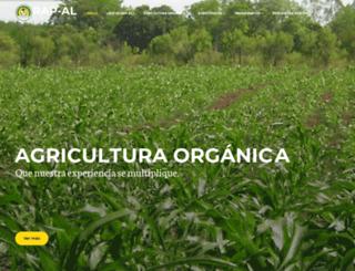 rapaluruguay.org screenshot